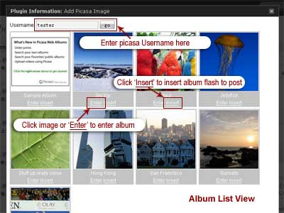 Easy Picasa - Picasa WordPress Plugins