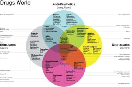 Drugs World Infographic