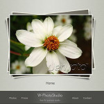 25+ Best Premium Photoblog WordPress Theme