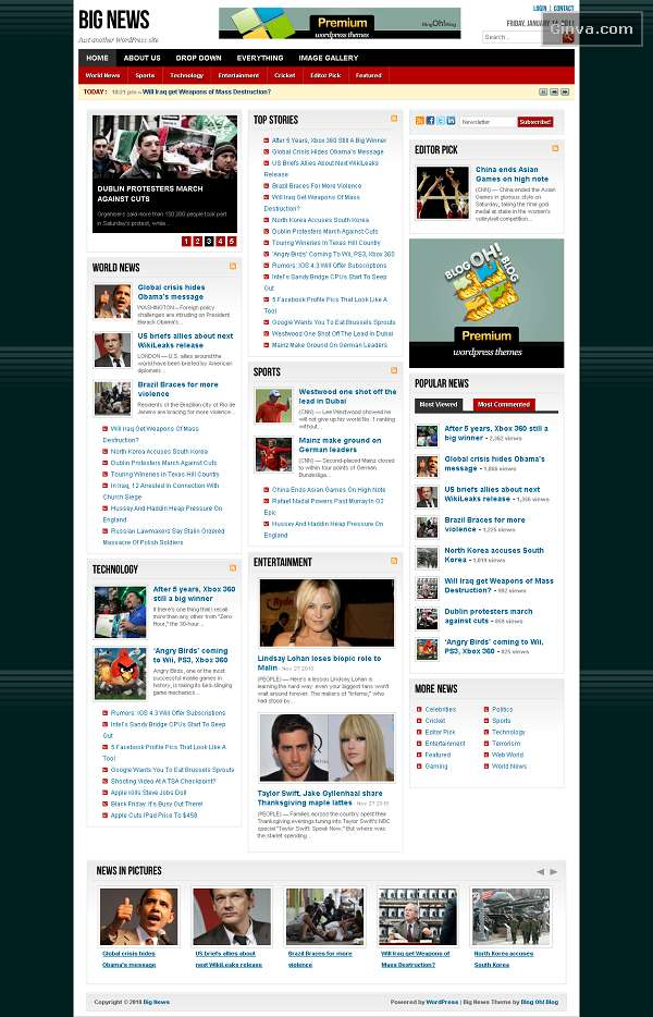 250+ Best Free and Premium Magazine WordPress Themes | Ginva