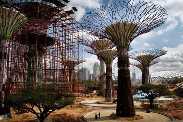 "These ""supertrees,"" under construction in Singapore, are vertical gardens, ranging from 75 to 150 feet in height and embedded with tropical flowering climbers, ferns and epiphytes. Although they loom somewhat menacingly over the humans who are building them, they're part of an effort to make the center of the city more livable.Wong Maye-E—AP"
