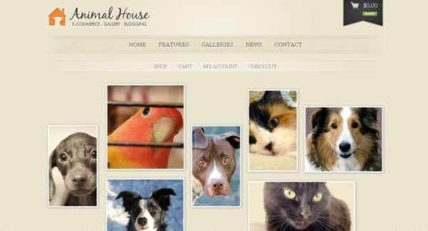 The Best Premium WordPress Themes – September 2011