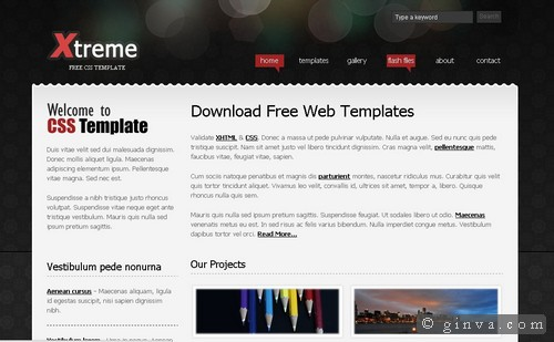 free website template 14