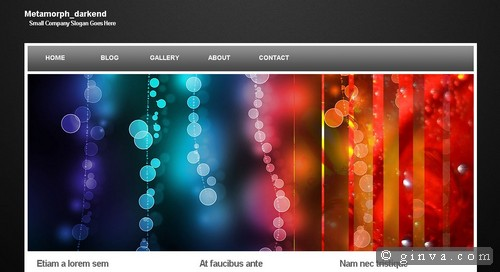 free website template 64
