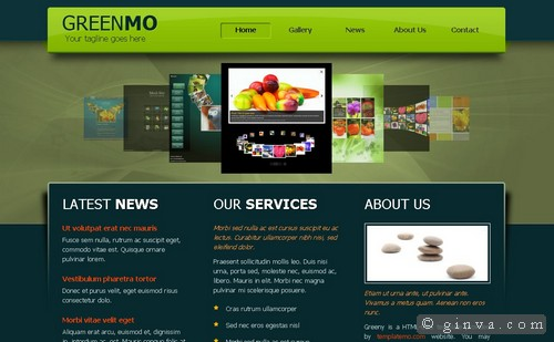 free website template 8