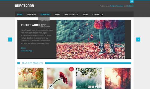 Best Premium WordPress Themes for January 2012