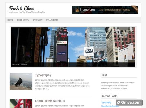 free clean simple wordpress theme 113