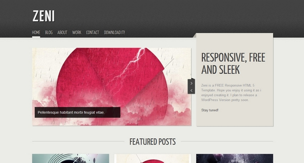 responsive html css website template layout 1