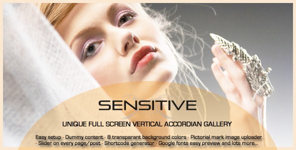 Sensitive - the next generation WordPress theme - ThemeForest Item for Sale