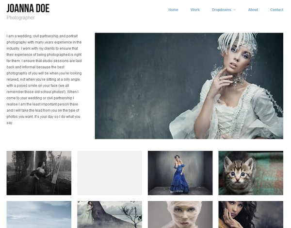 free and premium responsive portfolio wordpress themes 2