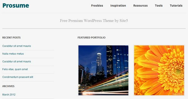 free and premium responsive portfolio wordpress themes 6