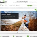 20 Best Wedding Website Templates (CSS/HTML & WordPress)
