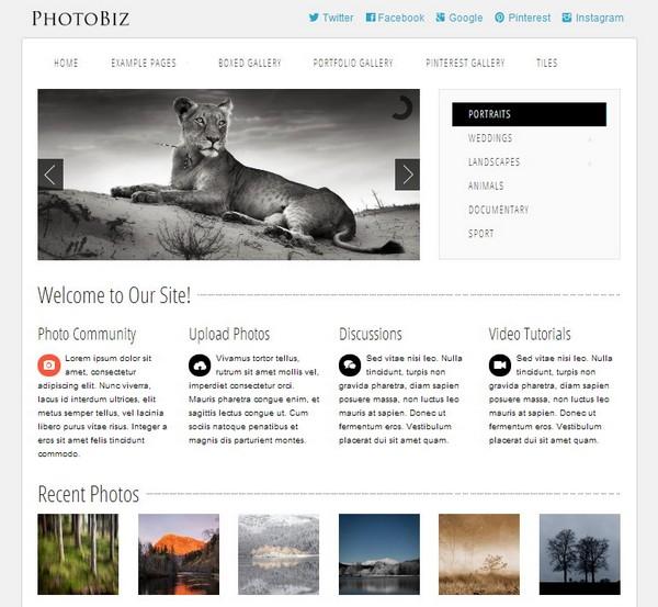 free and premium csshtml portfolio template