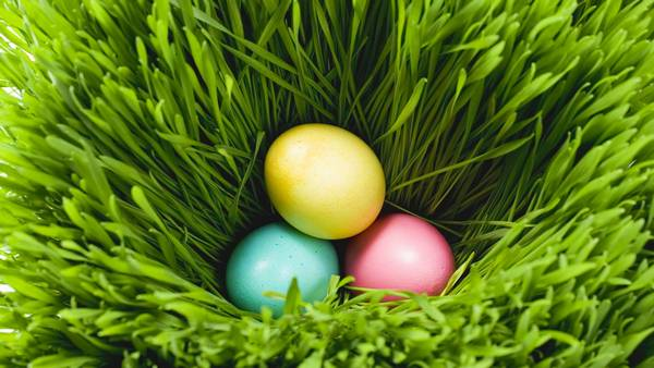 30 Cute And Funny Easter Wallpapers