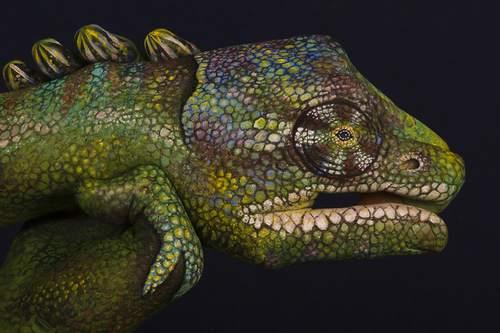 11-animal-hand-painting