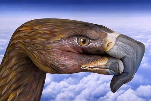 13-animal-hand-painting