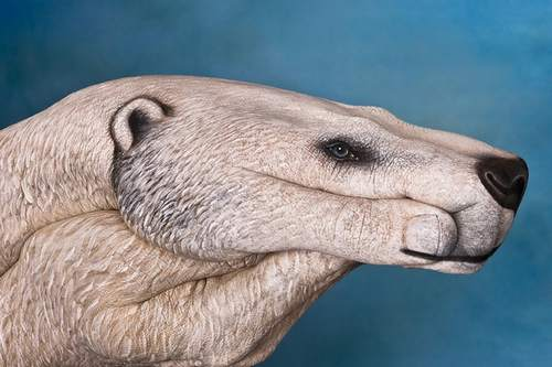 14-animal-hand-painting