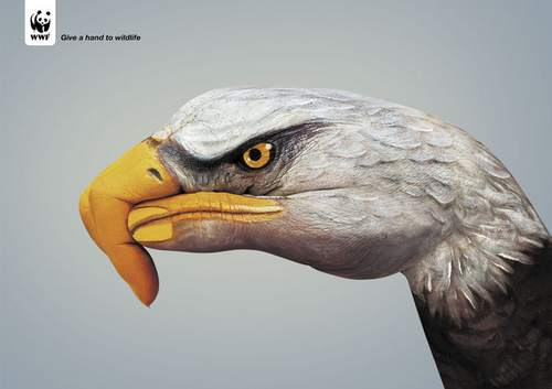 39-animal-hand-painting