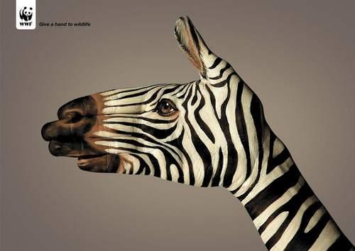 41-animal-hand-painting