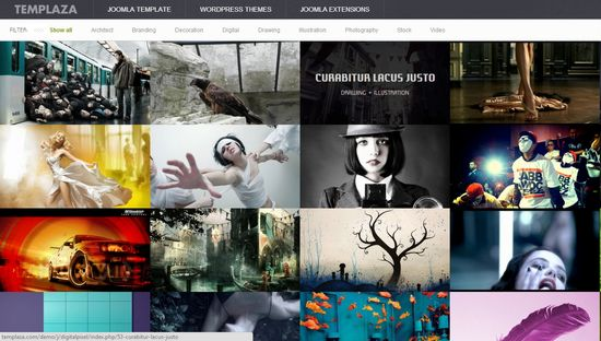 Free And Premium Portfolio Joomla Gallery Templates Ginva - Artist portfolio website templates