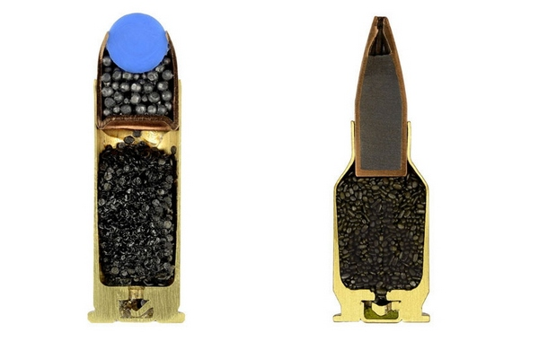 2-ammunition-bullet-cross-sections-photos