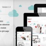 20 Responsive Fashion Magento Themes for 2013