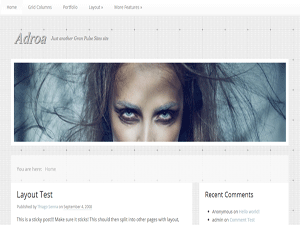 Adroa Free WordPress Portfolio Theme