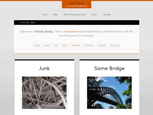 Chun Free WordPress Portfolio Theme