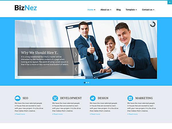 Biznez Lite Free WordPress Portfolio Theme