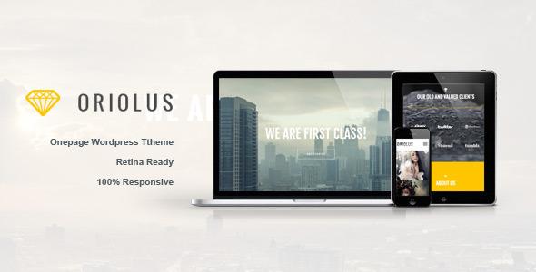Oriolus  Portfolio WordPress Theme