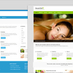 30+ Best Health WordPress Themes