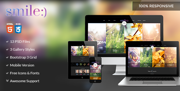 Smile html business template