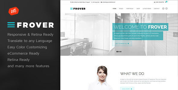 Frover wordpress business theme