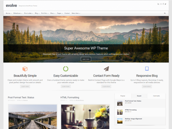 evolve free wordpress theme