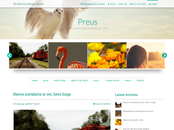 preus free parallax wordpress theme