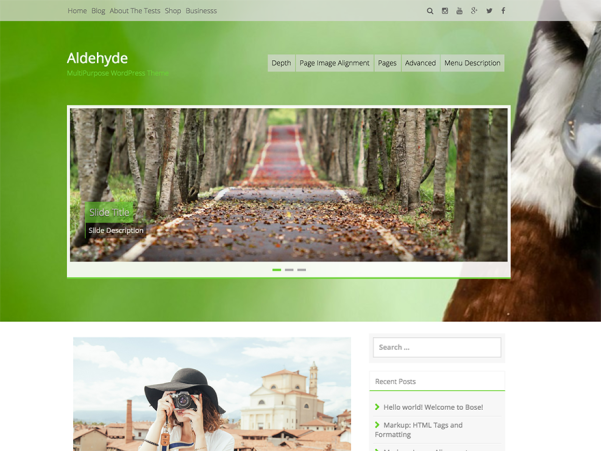 aldehyde free parallax wordpress theme