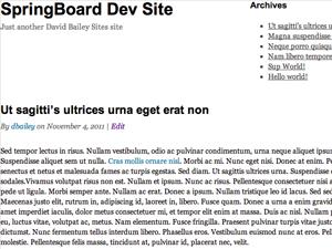 free springboard landing page wordpress theme
