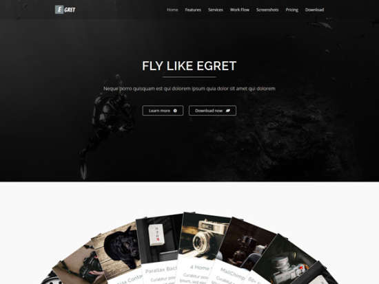 egret landing page website template