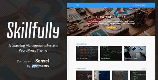 skillfully a learning management system theme