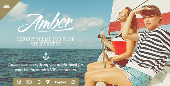amber deluxe business wordpress theme