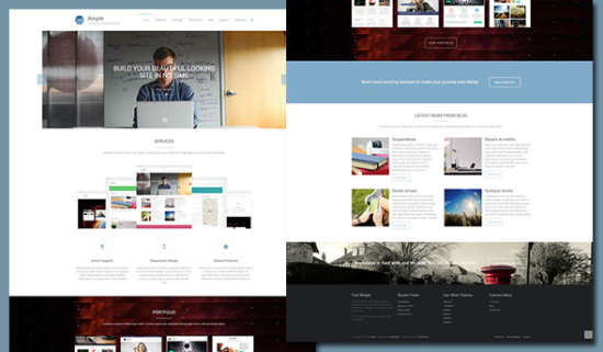 ample multipurpose theme