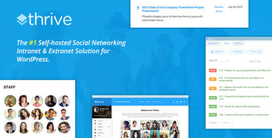 thrive intranet community wordpress theme