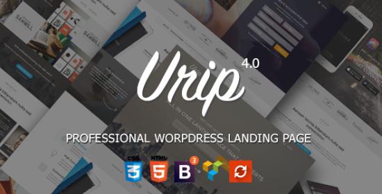urip expert wordpress squeeze page