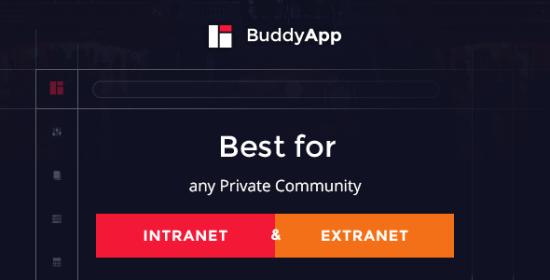 buddyapp mobile very first community wordpress theme