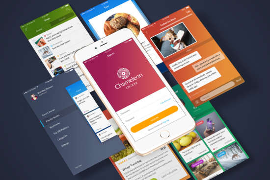 chameleon_ui_kit_psd,_sketch