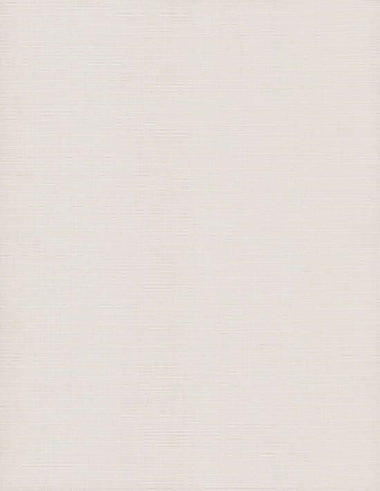 canvas_white_paper_texture