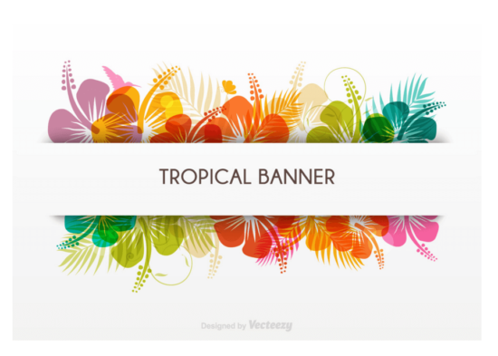 tropical_banner_in_vector_format