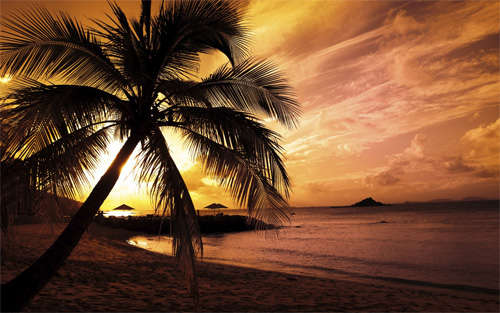 beach_sunset_background