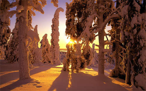 snowy_sunset_background