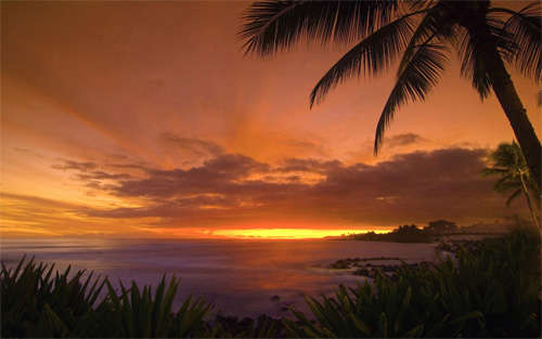 tropical_sunset_background